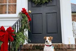 35-free-christmas-door-decoration-to-make-your-home-the-jolliest-on-the-block-new-2020